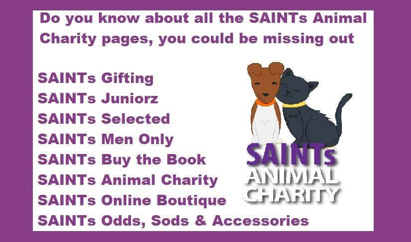 SAINTs Animal Charity Shop
