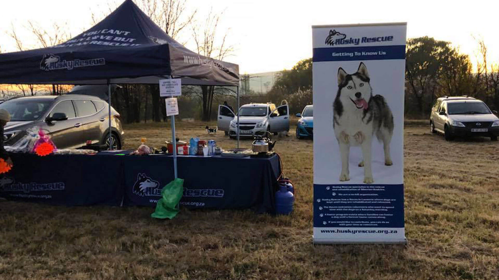 Winter Walk Husky Rescue South Africa