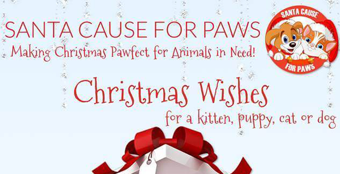 Santa Cause for Paws